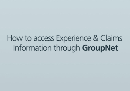 "A blank screen reading ""How to access experience & claims information"""
