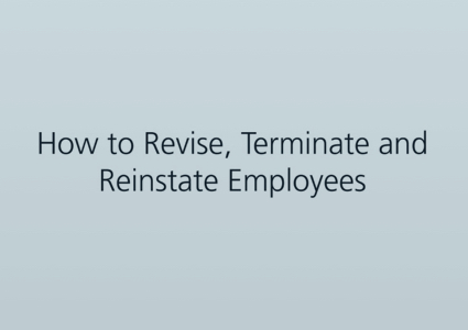 "A blank screen reading ""How to revise, terminate and reinstate employees"""